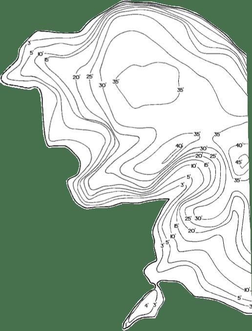 BG Contour Pattern
