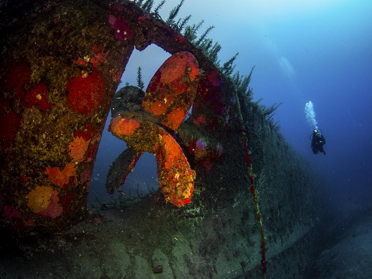 Ship Rotor Underwater